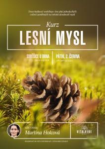 plakat-784x1109-kurz-lesni_mysl-2017-(web)