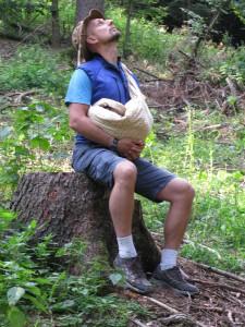 mira meda lesní mysl