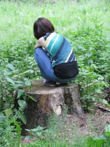 lesni mysl pařez
