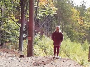Lesní mysl Jítrava - nadhled